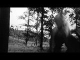 Мельница - Дракон (Нарезка из фильма